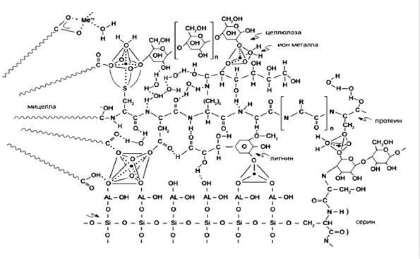 особенности сорбции ионов